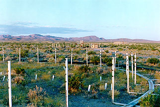 CO2 emitters, FACE Facility at the Nevada Test Site