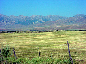 Hay field in Elko County, Nevada