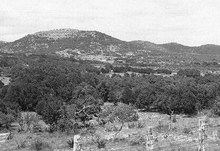 Historical photo of Nevada rangeland