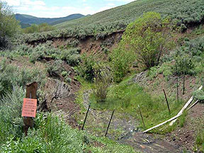 BLM monitoring riparian zone