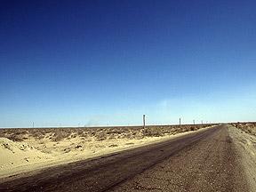 Uzbekistan cotton field in need of water