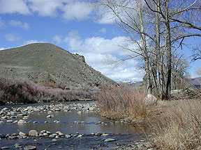 Truckee River near Reno, Nevada