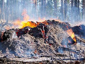 Close up of slash pile burning