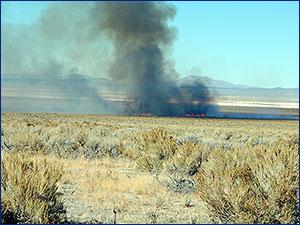 Wildfire in central Nevada