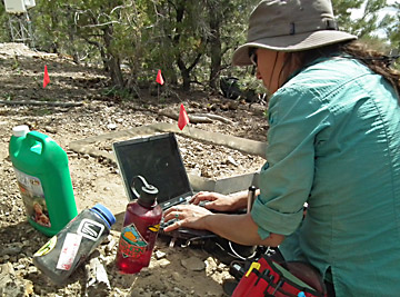 Scientist collecting field data to be used in simulation models