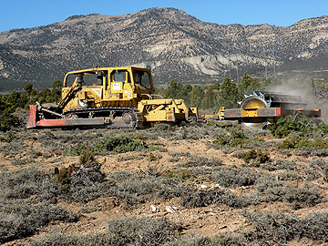 Clearing Pinyon and Juniper with mulcher