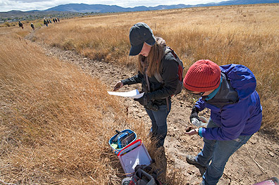 sampling soil types in Washoe Valley