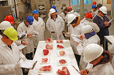 FFA Students competing in the Meat Evaluation