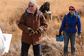 Tamzen Stringham working in Nevada's rangelands