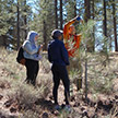 Team of citizen scientist working on sierran forest.