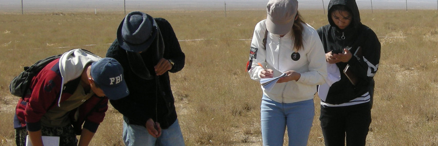 Uzbekistan grad students measure sagebrush in a field