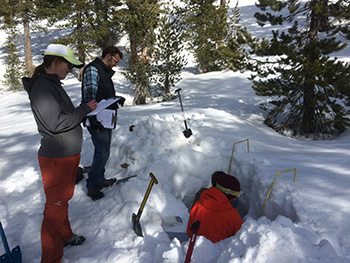 Harpold lab digging snow pits.