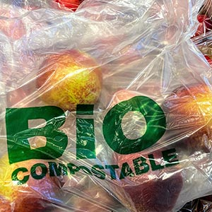 composting bag