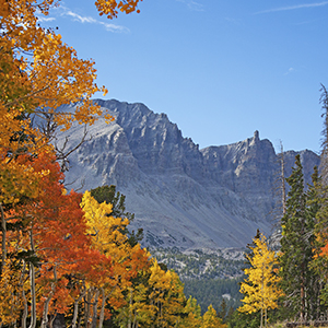 Great Basin mountains with trees in fall colors