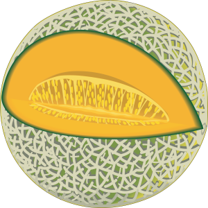A picture of a cartoon cantaloupe