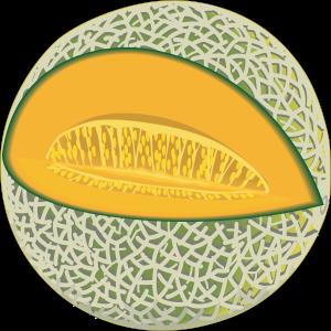 A picture of a cartoon cantaloupe