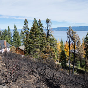 Photo of houses surrounded by burned landscape with a view of Lake Tahoe in the distance