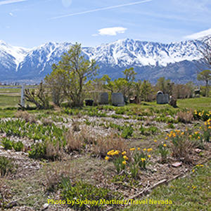 Dangberg Home Ranch Historic Park fields with snow covered mountains in background