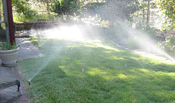Photo of a lawn with cans on it being watered by a sprinkler system