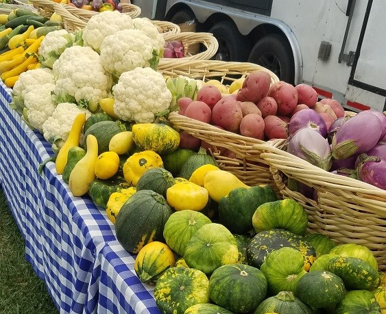 squash, potatoes, eggplant and cauliflower at a booth at a farmers market