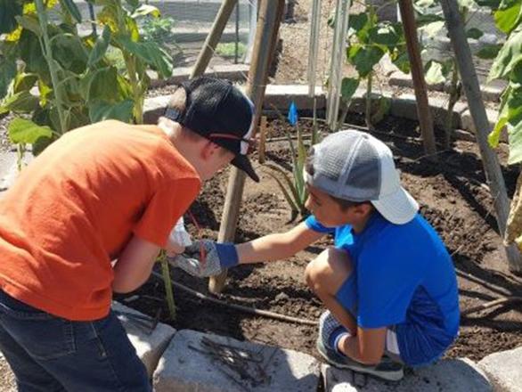 JMG Kids planting in YHEP Garden