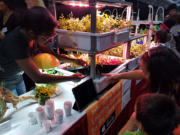 children learning about hydroponics