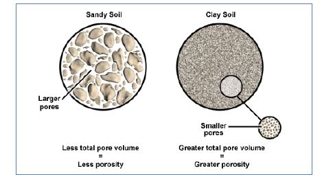 pore space in sandy soil vs. clay soil