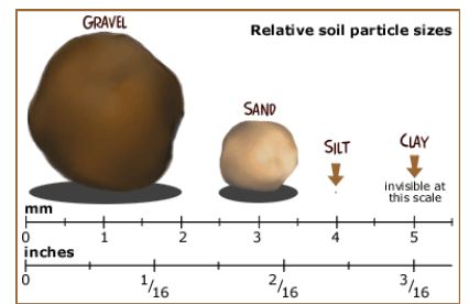 relative soil particle sizes