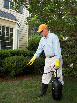 Photo of a man administrating pesticides while wearing gloves, eye protection and a hat