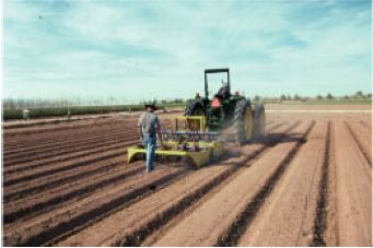 plowing crops