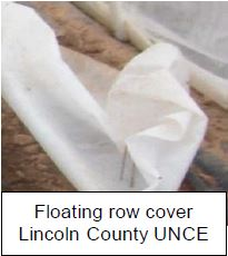 floating row cover lincoln county UNCE