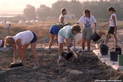 people working together to test the soil