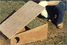 Photo of a wood bait station box