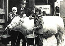 4-H'ers with feed buckets in hand, arms around a cow