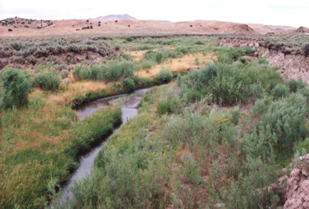 1999 photo of Susie Creek with improved management(shorter duration in either spring or fall).