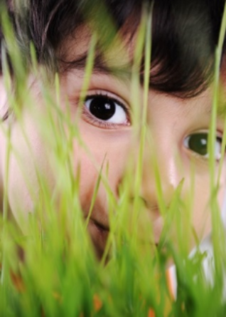 Child peering out from between blades of grass