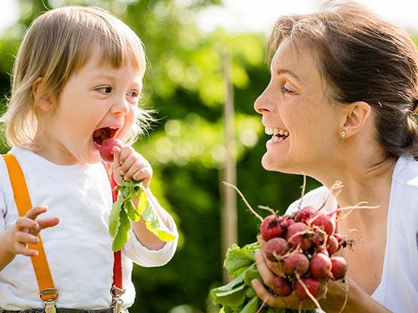 eating radish