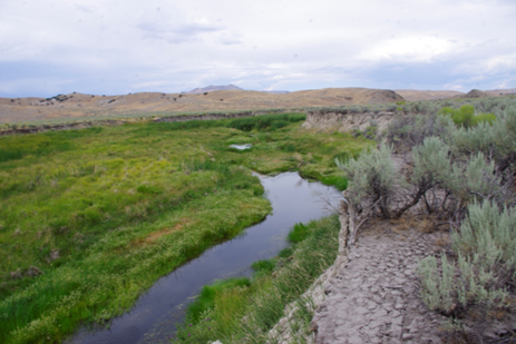 2014 photo of Susie Creek with improved management(shorter duration in either spring or fall).
