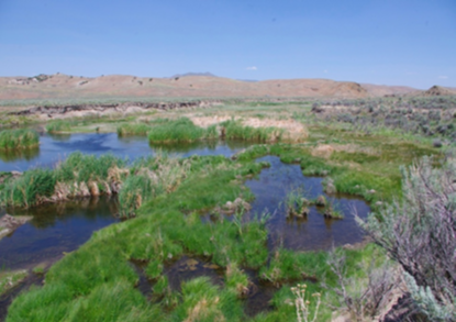 2012 photo of Susie Creek with improved management(shorter duration in either spring or fall).