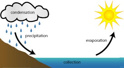 Water Cycle: condensation, precipitation, collection, evaporation