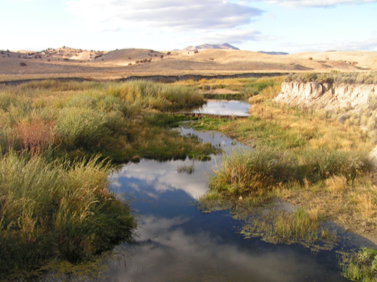 2007 photo of Susie Creek with improved management(shorter duration in either spring or fall).