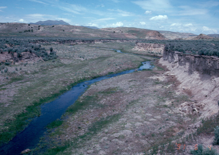 1991 photo of Susie Creek with poor riparian conditions from season long grazing year after year