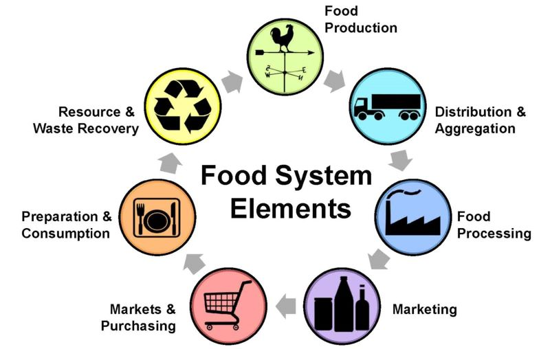 A picture food system elements