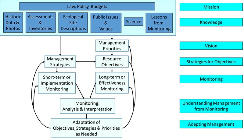 Flow chart showing that Management priorities (vision) drive resource objectives that drive long-term or effectiveness monitoring.  These must be consistent with Management strategies that drive short-term or implementation monitoring. Monitoring data drives monitoring analysis & Interpretation (understanding management from monitoring) which drives adaptation of objectives, strategies, and priorities as needed (adaptive management). All of this is driven by knowledge from historic data and photos, assessments and inventories, ecological site descriptions, public issues and values, science, and lessons from monitoring