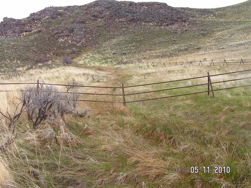 Exclosure fence showing the outside area with abundant green vegetation and the inside areas showing similar vegetation but more dry residual vegetation from a prior year.