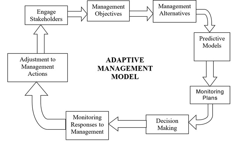 Adaptive management cycle showing:Engage stakeholders, management objectives, management alternatives, Predictive models, monitoring plans, decision making, monitoring responses to management adjustment to management actions etc.