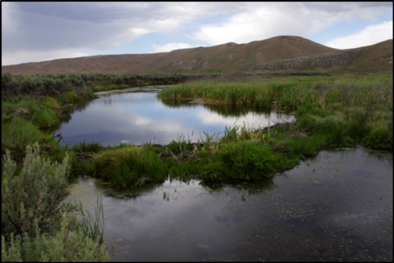 Maggie Creek in 2014 after substantial improvement from better management.