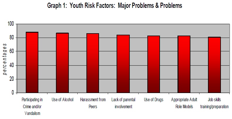 Bar graph of different youth risk factors to show that crime and/or vandalism is the highest.