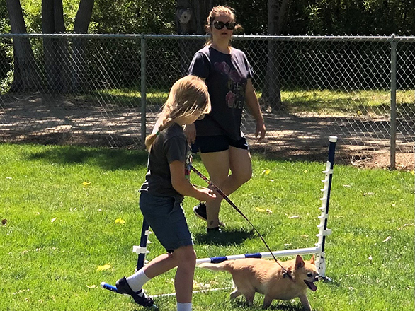 Annamarie guiding a 4H youth and her dog