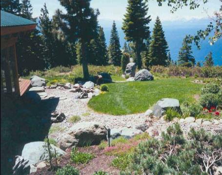 Tahoe Basin landscape